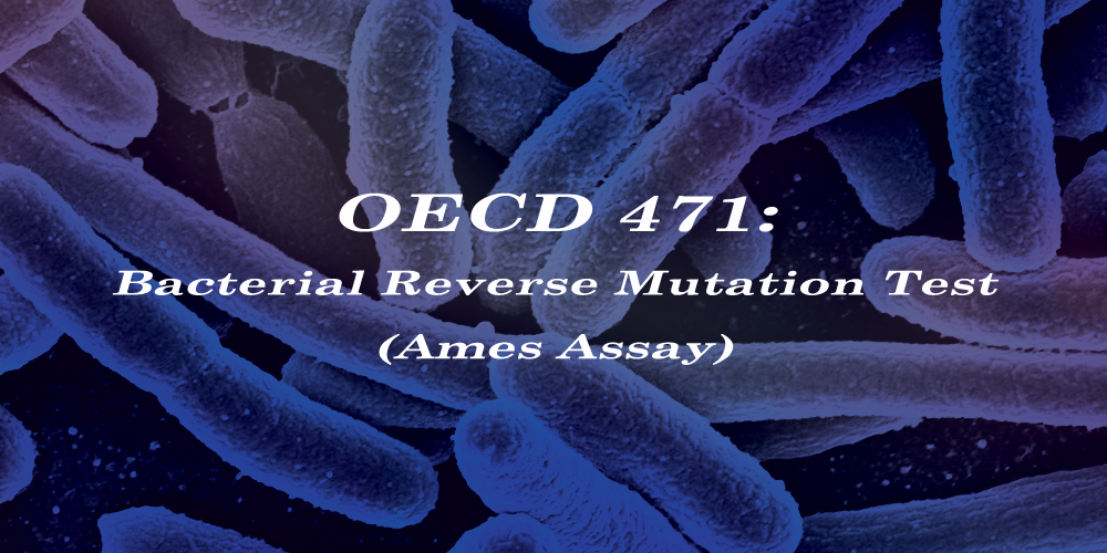 OECD 471: Bacterial Reverse Mutation Test (Ames Assay)
