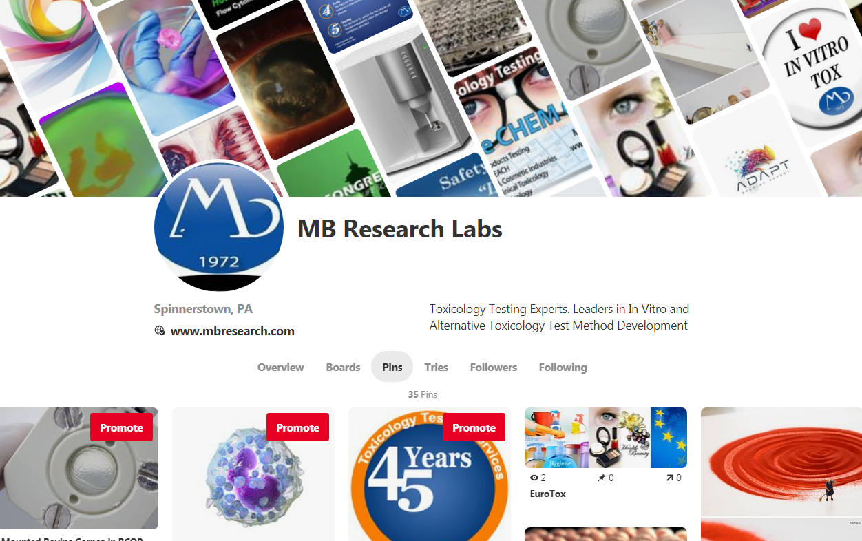 Pinterest-MBResearch